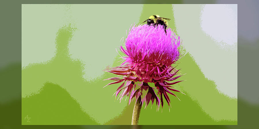 Bumblebee Photograph - Summertime Bumblebee by Andrew Zydell