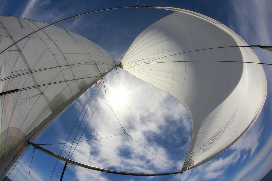 Sun And Sails Photograph by Komisar