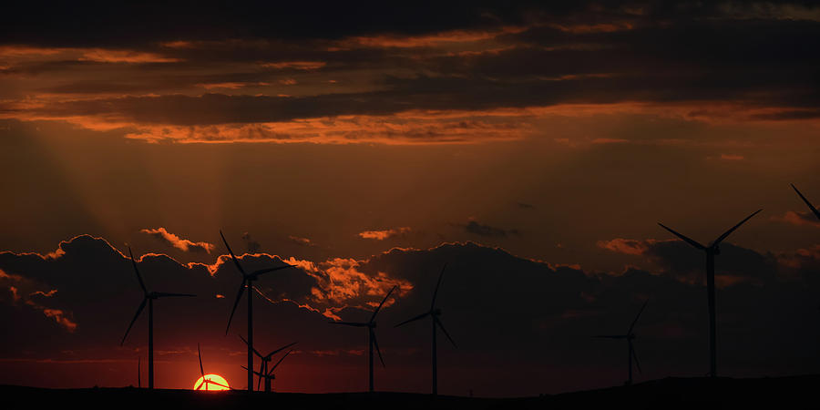 Sun and Windmills by Don Risi
