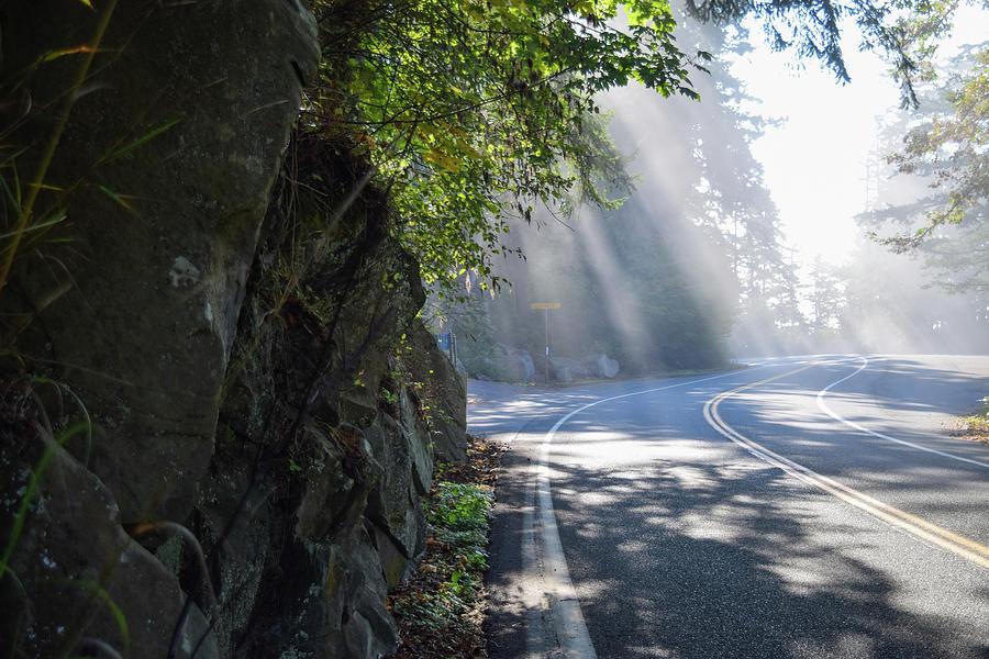 Sun Rays on Chuckanut Drive by Tom Cochran
