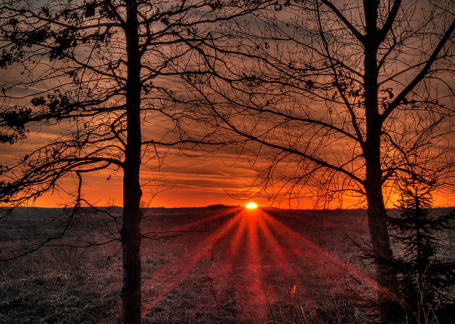 Sun Setting Rays by Laura Hedien