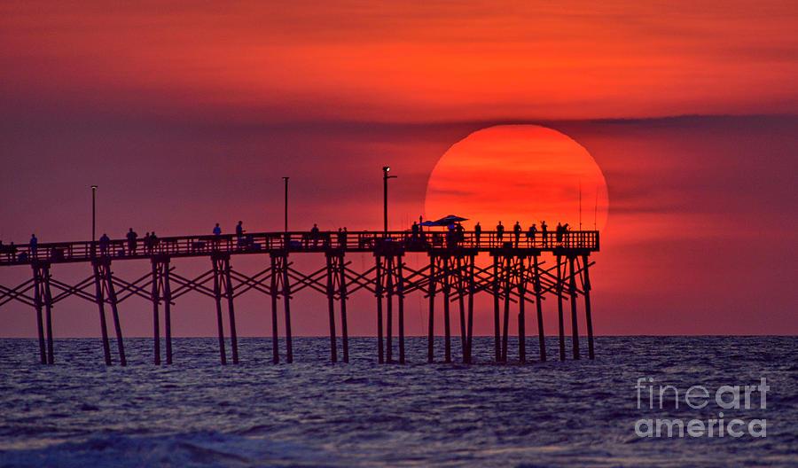 Sun Umbrella by DJA Images