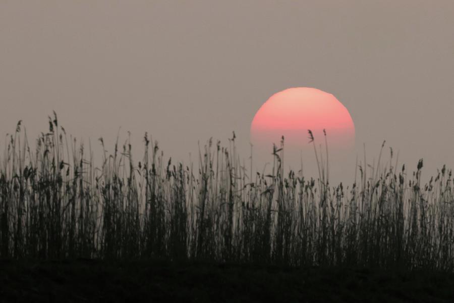Sundown by Wendy Cooper
