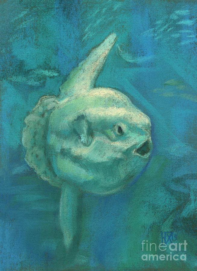 Sunfish, Sun Fish, Mola Mola by Julia Khoroshikh