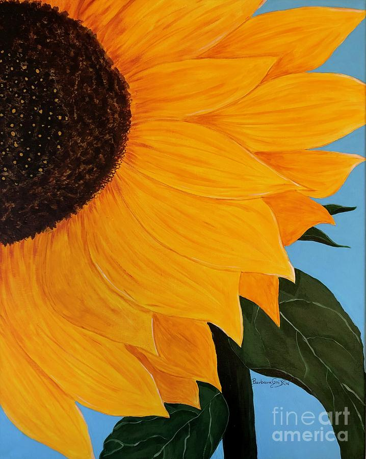 Sunflower and Blue Sky by Barbara Griffin
