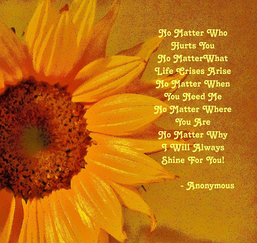 Sunflower Creed by Eileen Brymer