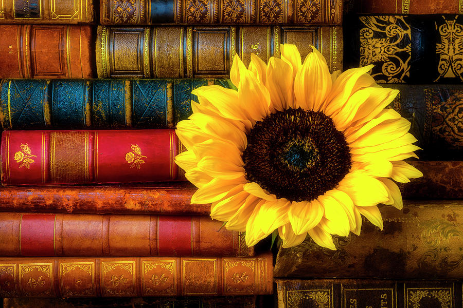 Book Photograph - Sunflower In Stack Of Books by Garry Gay