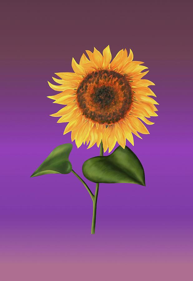 Sunflower on Purple by Elizabeth Lock