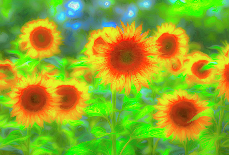 Sunflower Pastel Art Photograph