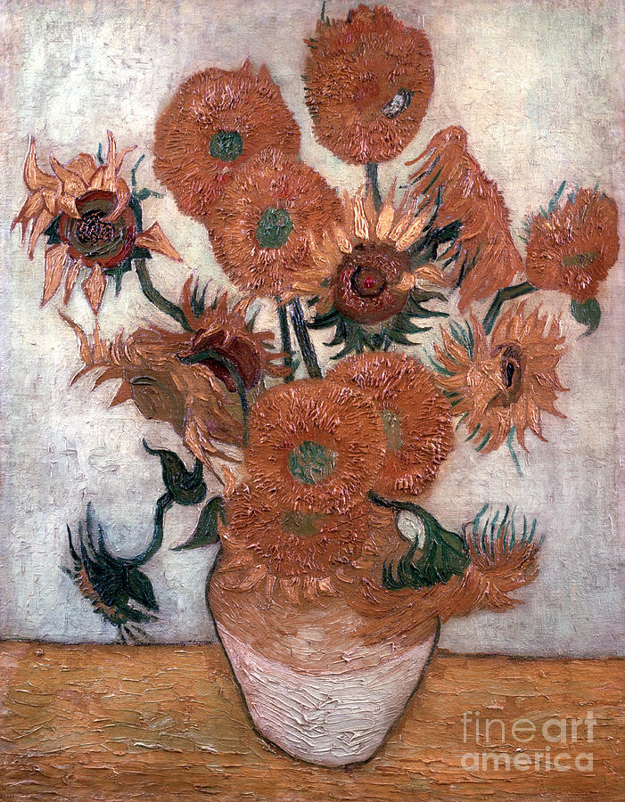 Sunflowers, 1889. Artist Vincent Van Drawing by Print Collector