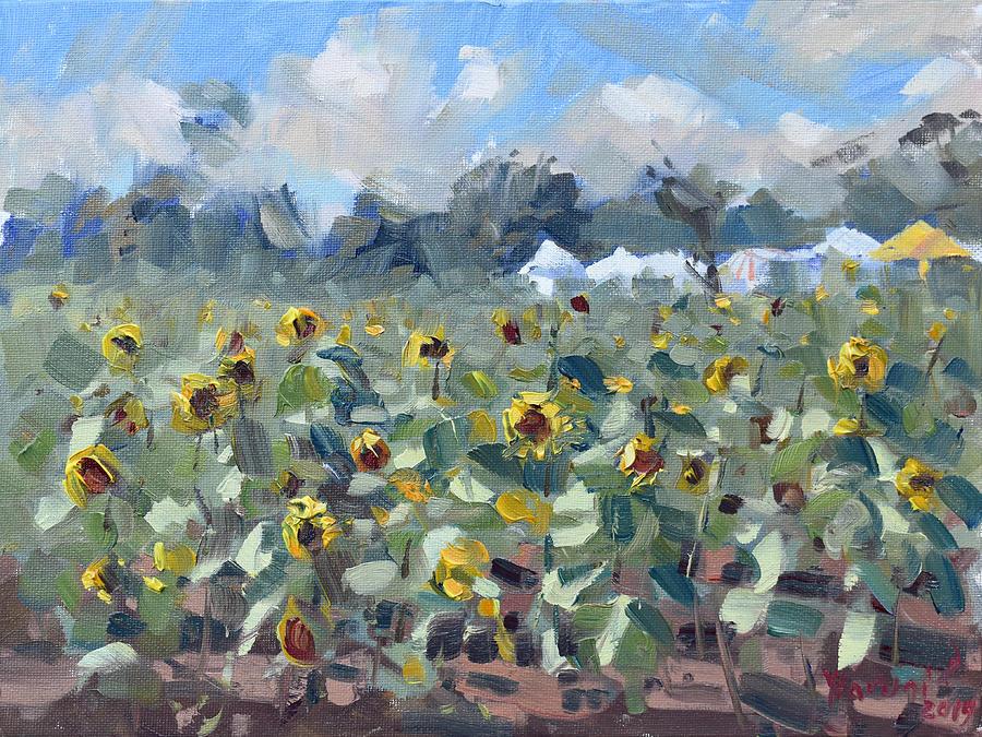 Sunflowers in Sanborn by Ylli Haruni