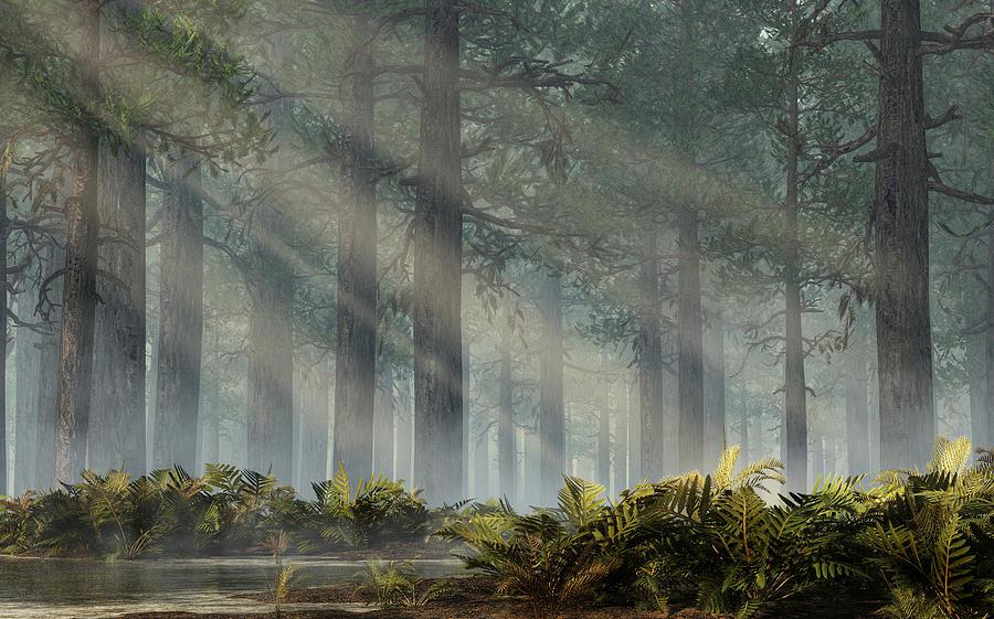 Jungle Digital Art - Sunlit Jungle by Mindscape Arts