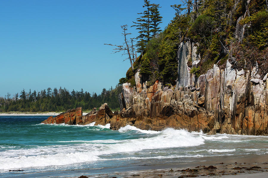 Sunny Beach Day on Calvert Island, British Columbia by Pacific Northwest Sailing