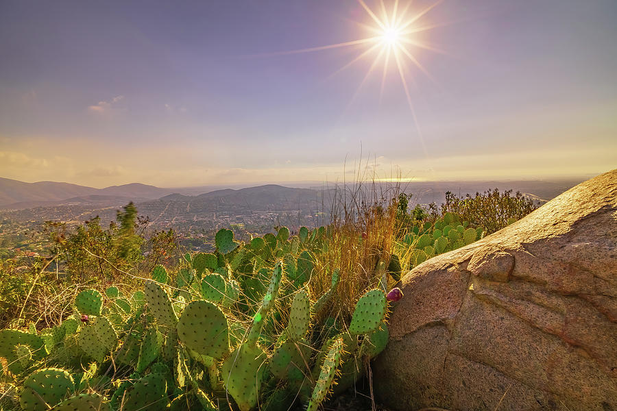 Landscape Photograph - Sunny Day At Mount Helix, San Diego by McClean Photography