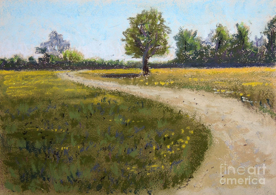 Sunny Meadow by Jayne Wilson