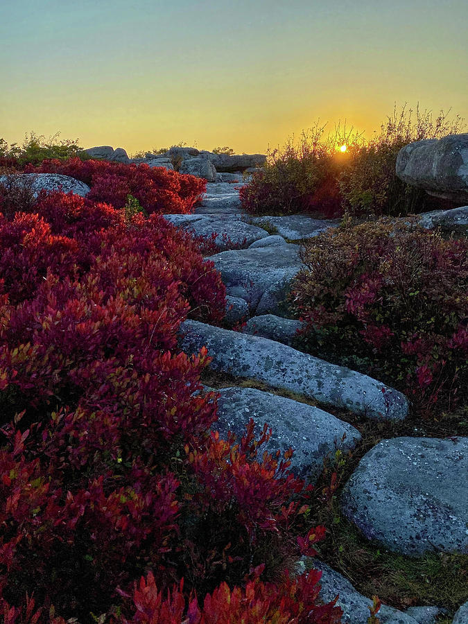 Sunrise at Bear Rocks by Lori Coleman