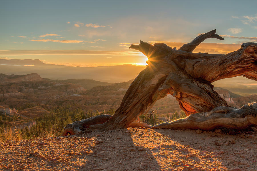 Sunrise At Bryce Canyon 0964 Photograph