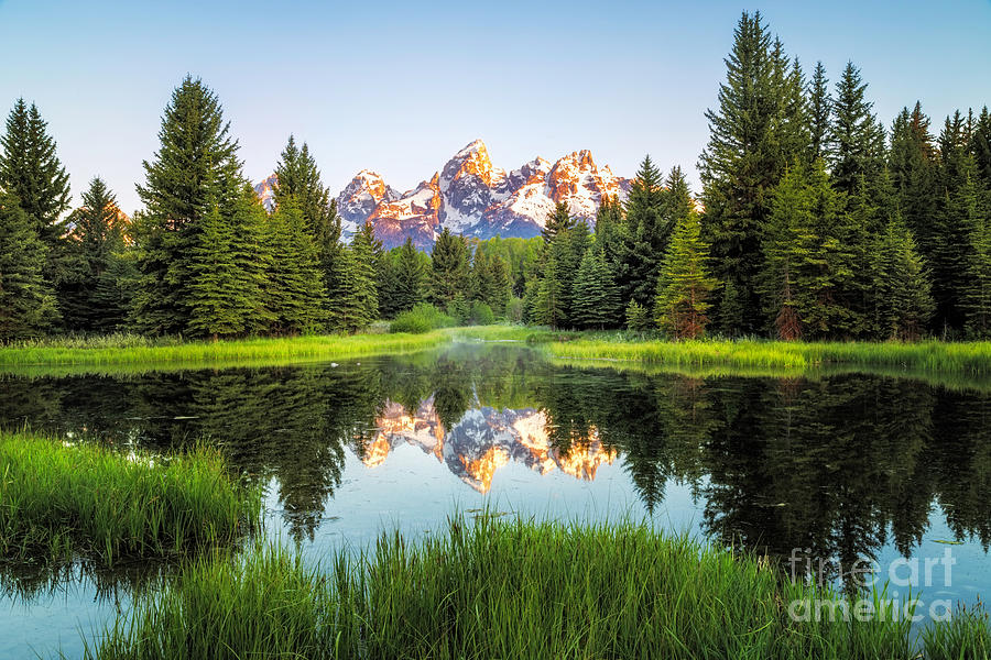 Sunrise at Schwabacher landing in Grand Teton National Park by Ronda Kimbrow