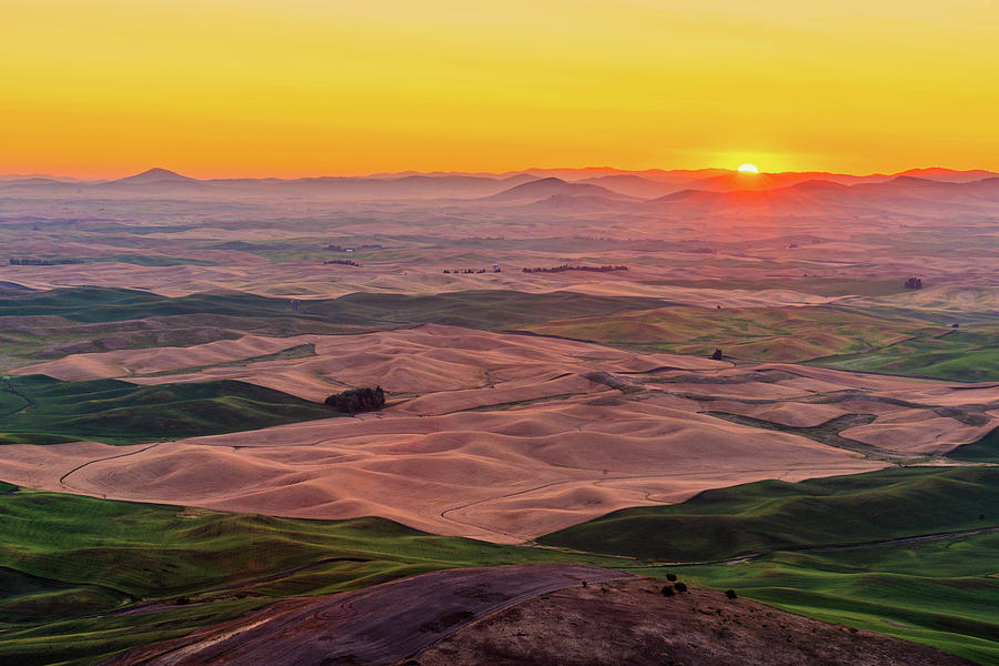Sunrise at Steptoe Butte State Park by Michael Lee