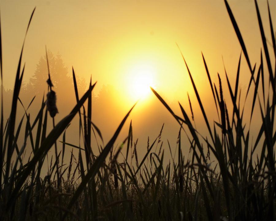 Sunrise by Bob Mullins