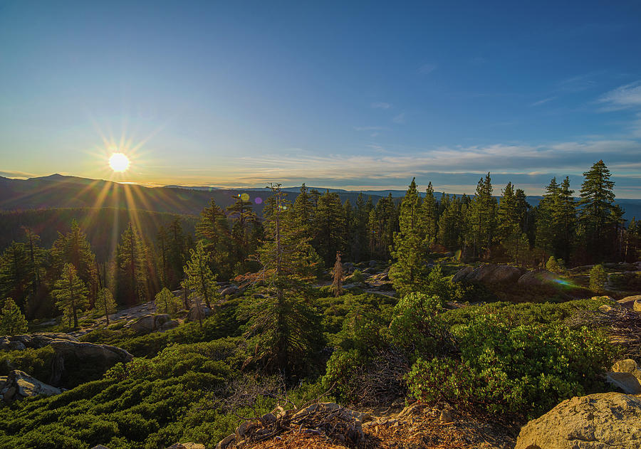 Sunrise El Dorado National Forest by Jonathan Hansen