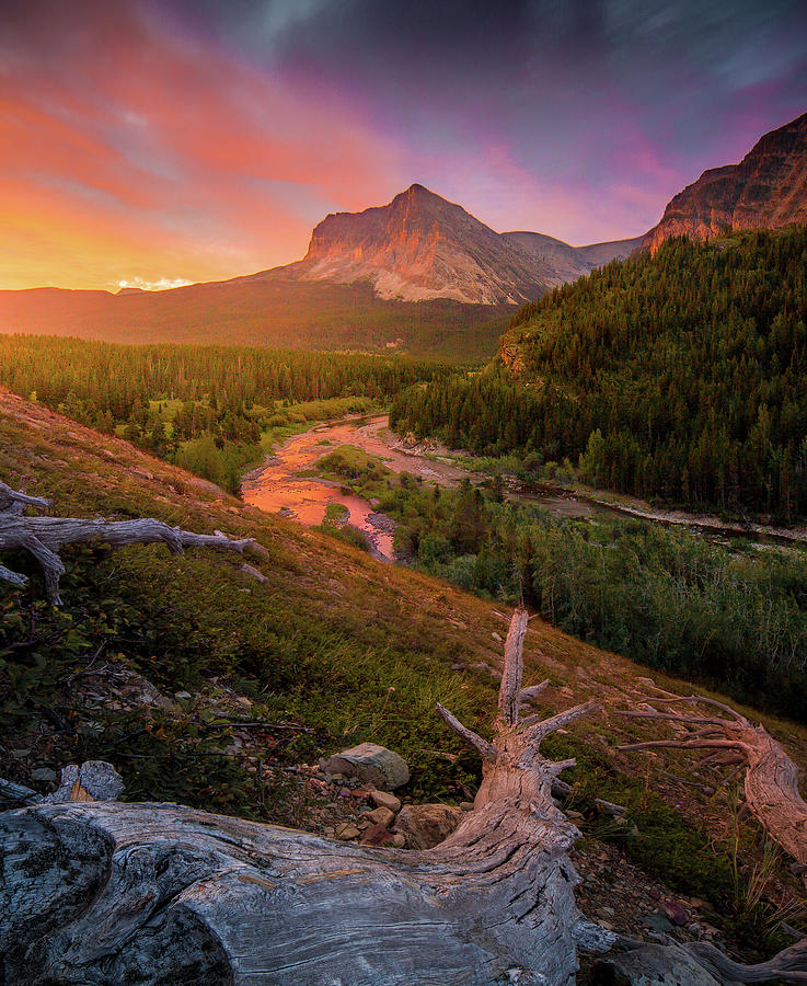 Sunrise Explosion / Many Glacier, Glacier National Park  by Nicholas Parker