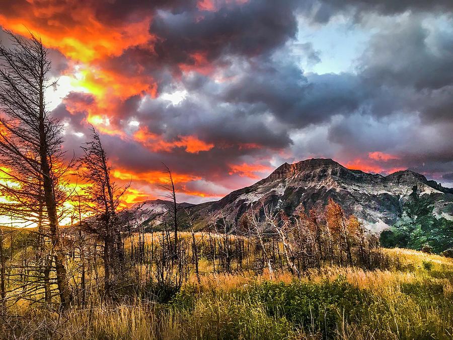 sunrise fire 001 by David Brookwell
