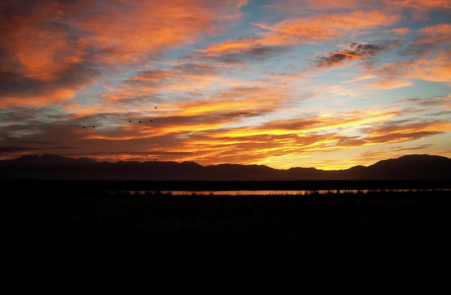 Sunrise In The Marsh. 8267 Photograph
