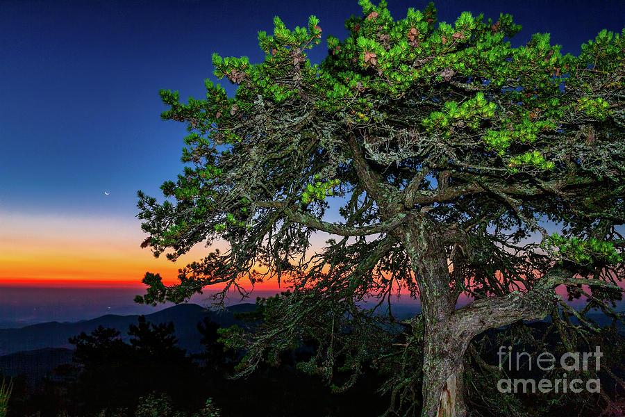 Sunrise Moon by Dan Carmichael