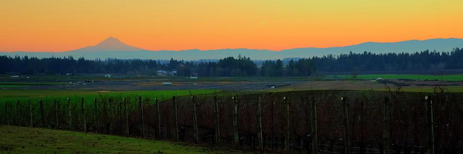 Sunrise Mt. Hood Wine Country by Jerry Sodorff