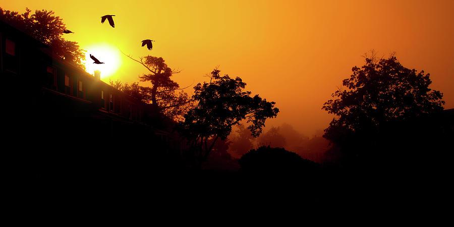 Sunrise On Gittings Avenue by Reynaldo Williams
