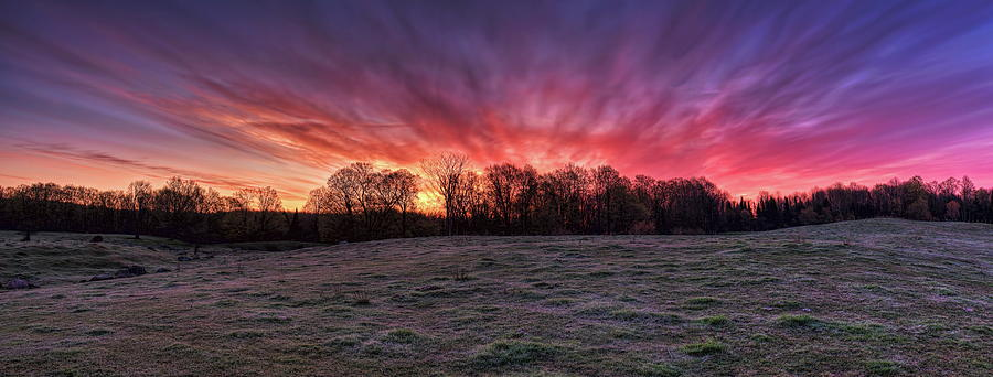 Sunrise Over A Frosted Pasture Panorama by Dale Kauzlaric
