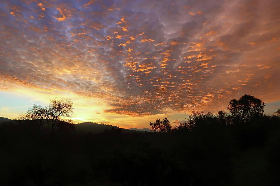 Sunrise Silhouette by Robert Blandy Jr