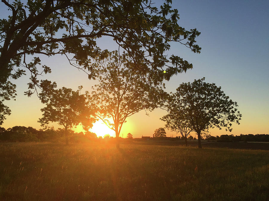 Sunrise Special by Matthew Seufer