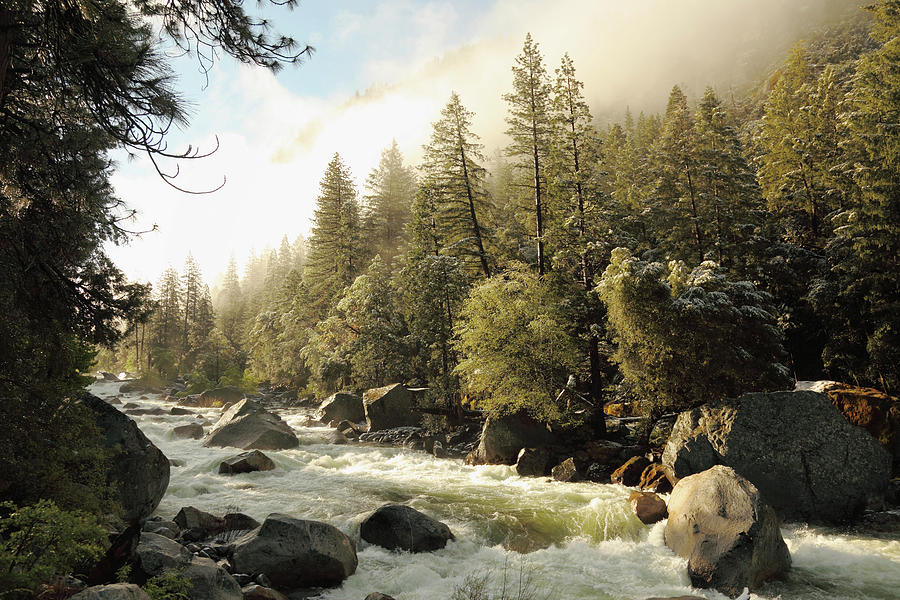 Sunrise Spring View Of Merced River At Photograph by Arturbo