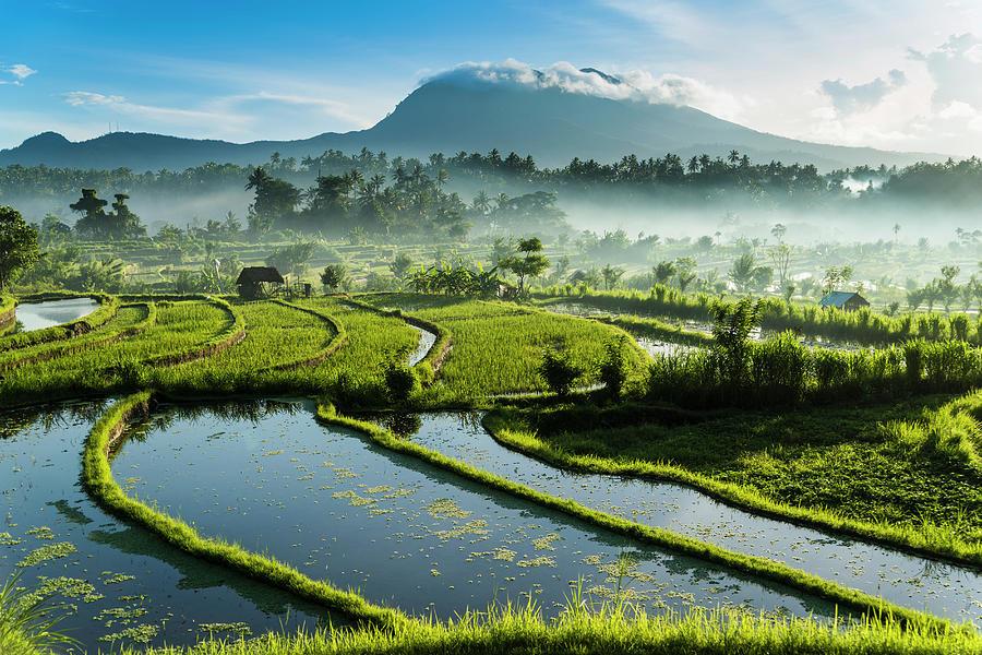 Sunrise Tirta Gangga, Bali Photograph by John Harper