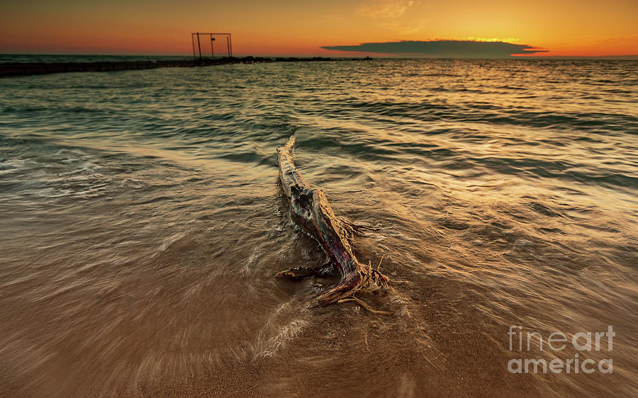Sunrise water dance by Andrew Slater