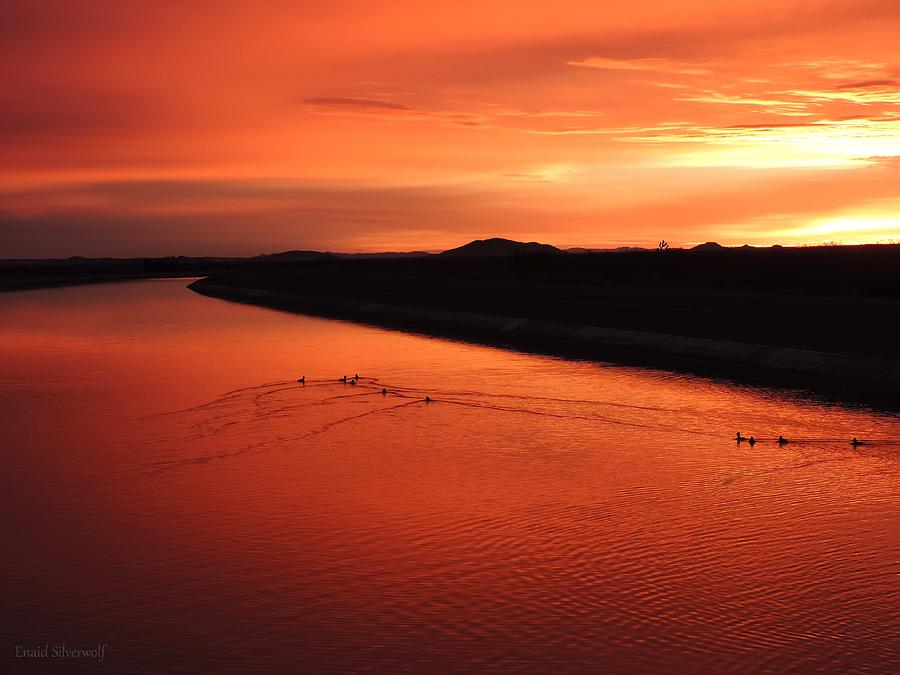 Sunrise With Ducks California Aqueduct 3-20-2018 A by Enaid Silverwolf