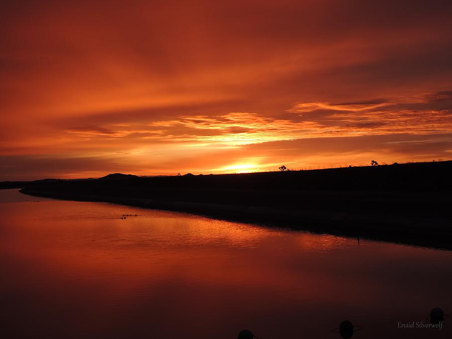 Sunrise With Ducks California Aqueduct 3-20-2018 B by Enaid Silverwolf