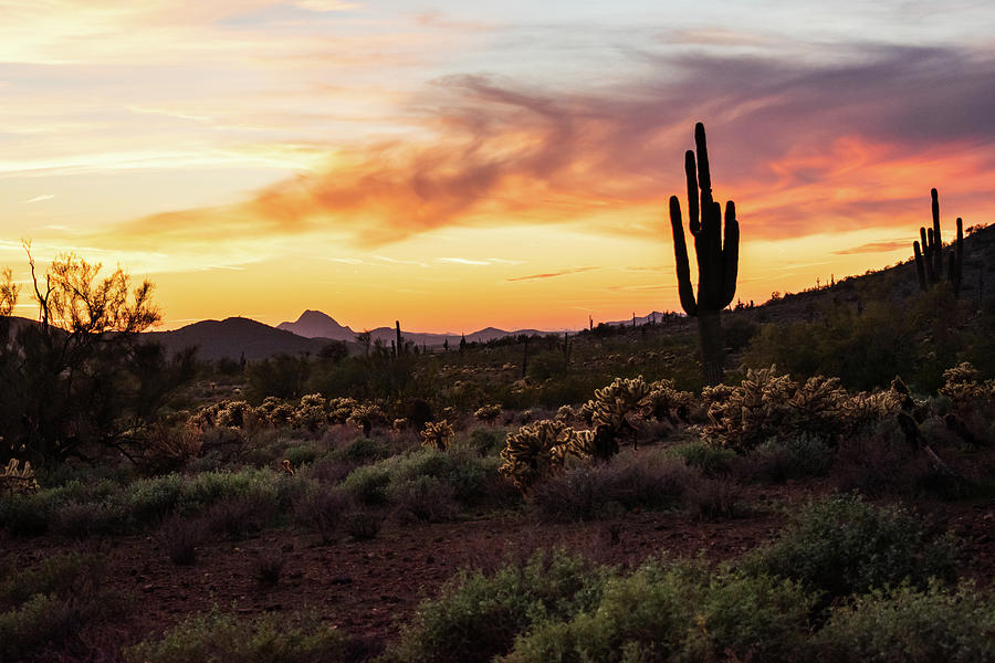 Sunset at Apache Wash Trailhead by Juliana Swenson