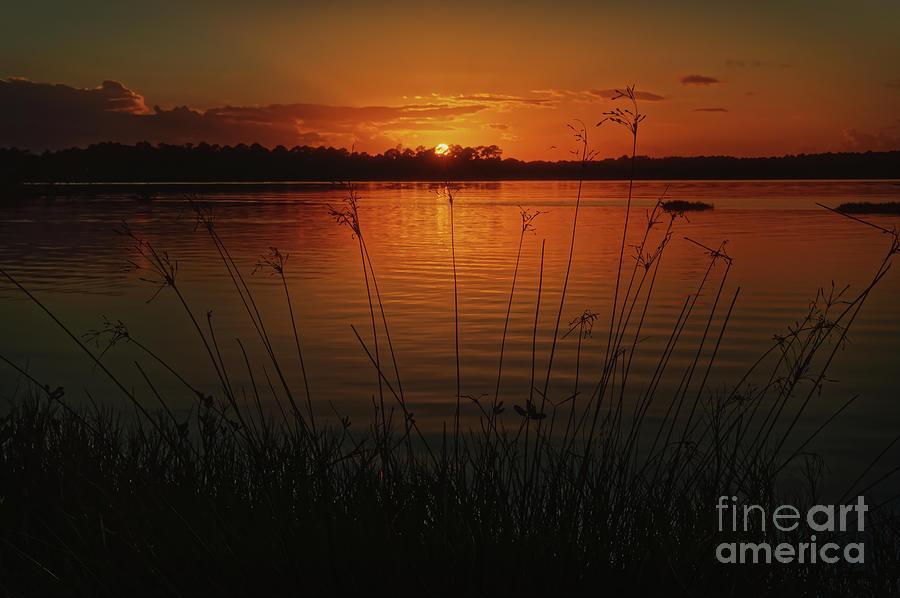 Sunset at Tomoka Basin- 1189 by Marvin Reinhart