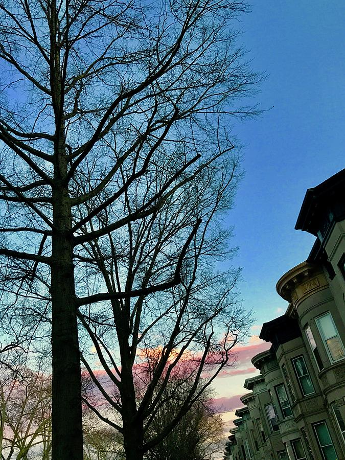 Sunset behind the Brownstones by Liza Beckerman