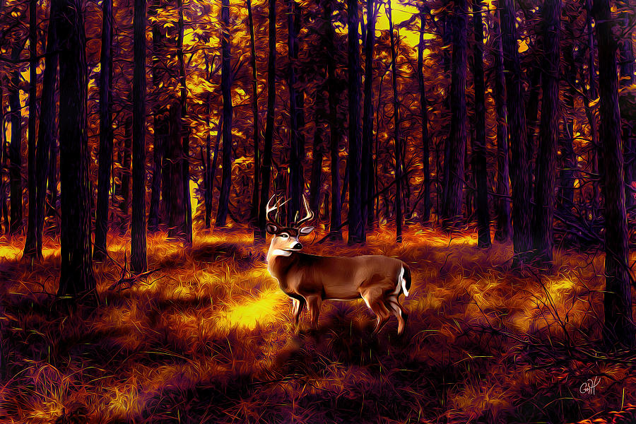 Sunset Buck in the Trees by Christina M Hale