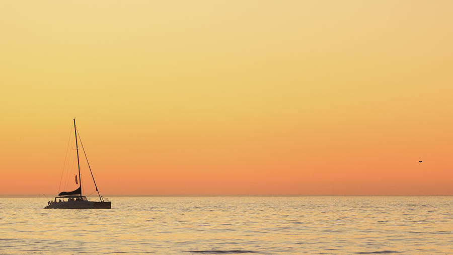 Sunset Cruise At Cape Town Photograph by Tony Hawthorne