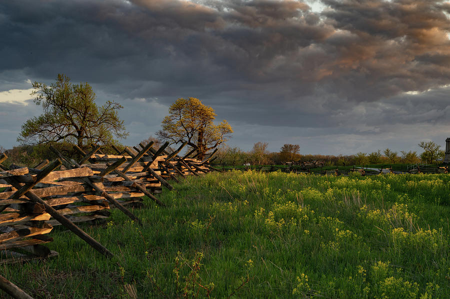 Sunset Fence by Dan Urban