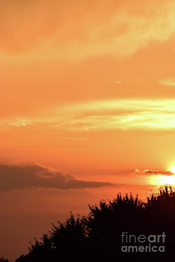 Sunset Illusion by Patti Whitten