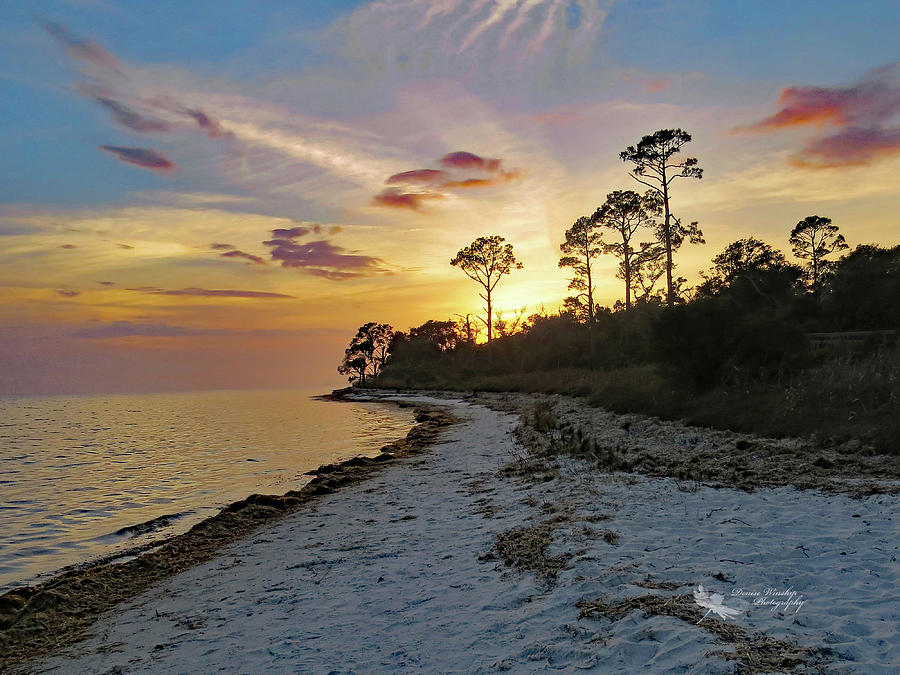 Sunset in NW Florida  by Denise Winship
