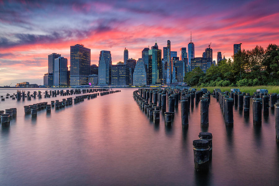 Sunset in Pink by Fran Gallogly