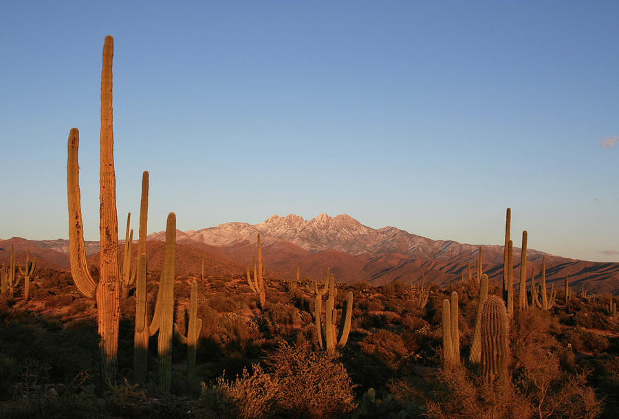 Sunset In The Four Peaks Wilderness - Photograph by Jpschrage
