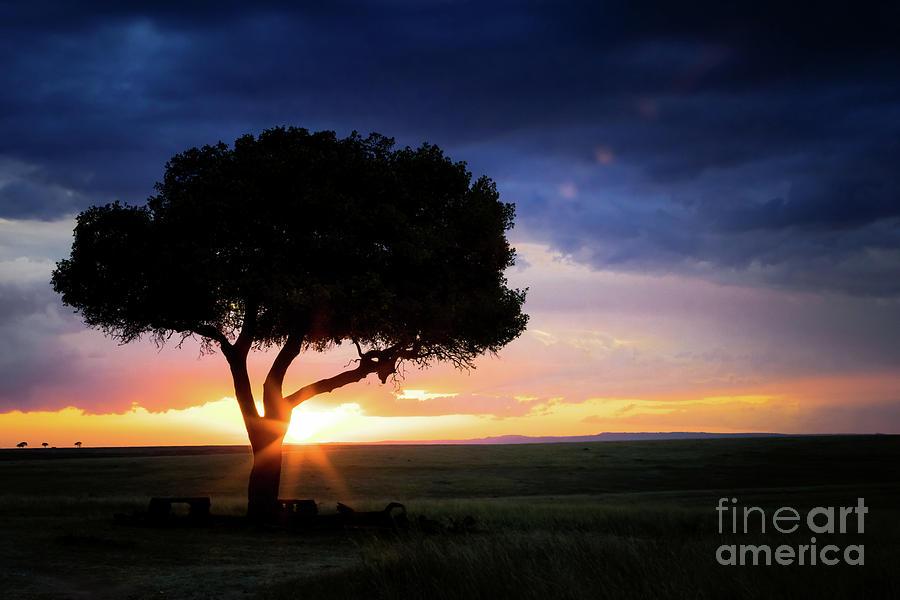 Sunset in the Masai Mara by Jane Rix